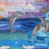 Dolphin Sham
