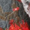 Close up; Pele Meets Kamapuaa